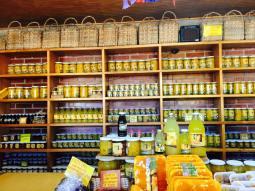 Local Papaya plantation shop!